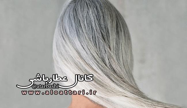 درمان سفیدی مو با این محلول خانگی - مجله سلامتی عطارباشی