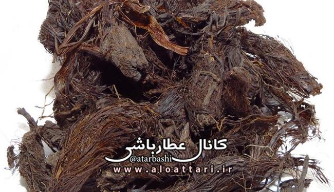 بررسی برخی از خواص ریشه سنبل الطیب - مجله سلامتی عطارباشی