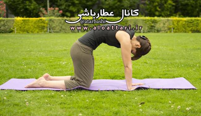 تمرین منظم یوگا برای سلامت کمر - مجله سلامتی عطارباشی